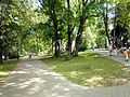 PL Nałęczów park3.jpg