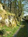 Padarn Country Park - geograph.org.uk - 90852.jpg