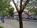 Pandeshwar Road in Mangalore - 1.jpg