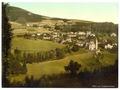 Pano rama, Johanisbad, Riesengebirge, Germany (i.e., Janské Lázně dnes, Czech Republic)-LCCN2002720504.tif