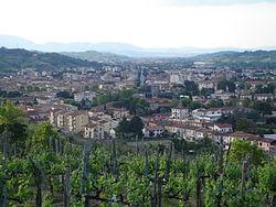 Panoramamontevarchi5.jpg