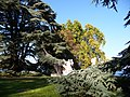Parc de la Perle du Lac, Geneve - panoramio (14).jpg