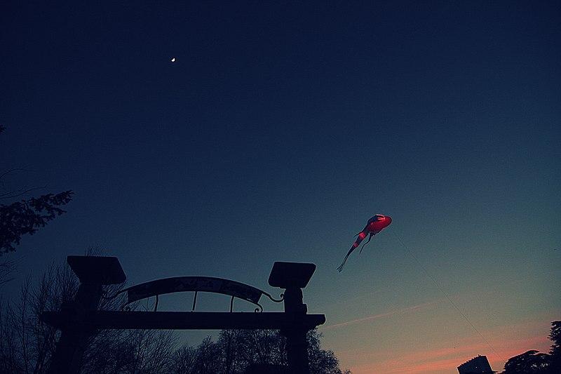 File:Parc de la tête d'or sous sa lune, avec sa baleine.jpg