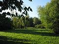 Parco del Loto, alberi.JPG