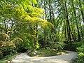 Parco della Villa Pallavicino - Stresa - DSC03176.JPG