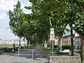 Parco lungarno di santa rosa 01.JPG