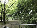 Park near Otometoge St. Mary Church 2.jpg
