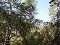 Parque nacional de Peneda-Gerês (36968481193).jpg