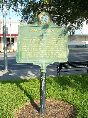 Pasco County Courthouse - Image: Pasco Cty Courthouse Dade City marker 01