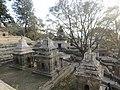 Pashupatinath Temple IMG 1496 11.jpg