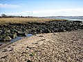 Pebble bank meets mud flats - geograph.org.uk - 661794.jpg