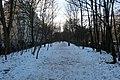 Petite Ceinture 16e neige 1.jpg
