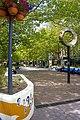 Petrie Plaza.jpg