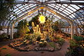 Phipps Conservatory Desert Room.jpg