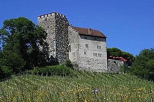 Habsburg, Switzerland - Habsburg castle