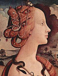 Fiora et le Magnifique cover