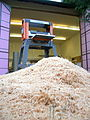 Pile of shavings with thicknesser.jpg
