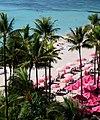 Pink Parasols (23816904365).jpg