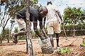 Planting Seed.jpg