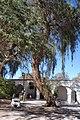 Plaza de San Pedro de Atacama.JPG