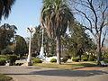 Plaza y palmera.JPG