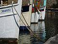 Pointus au Port du Crouton.jpg