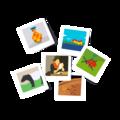 Polaroids-SGBerlin.png