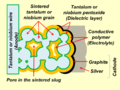 Polymer-Ta-Nb-Anode-construction.png