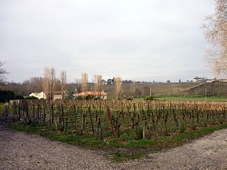Pomerol AOC - The soils of Pomerol are varied and include a mixture of clay, gravel and sand.