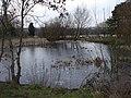 Pond in Fairwater Park, Cardiff - geograph.org.uk - 1147701.jpg