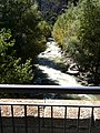 Pont nou de la Margineda- water.jpg