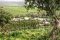 Portugal - Algarve - Alcalar - view of the orange grove (25090581542).jpg