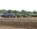 Potato harvest in Trumpery Lane - geograph.org.uk - 1539458.jpg