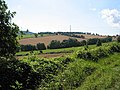Power lines from Crews Hill - geograph.org.uk - 522487.jpg