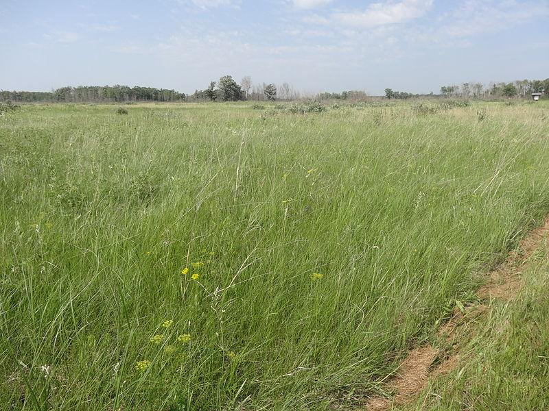 File:Prairie view TGPP.JPG