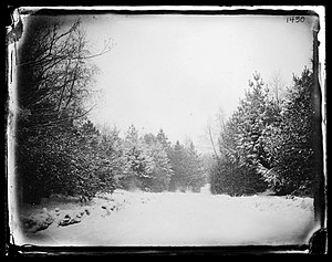 Prospect Park (Brooklyn) - Prospect Park in 1880