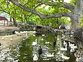 Ptičji park Belgrade zoo.JPG