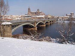 Puente Enrique Estevan Tormes.JPG