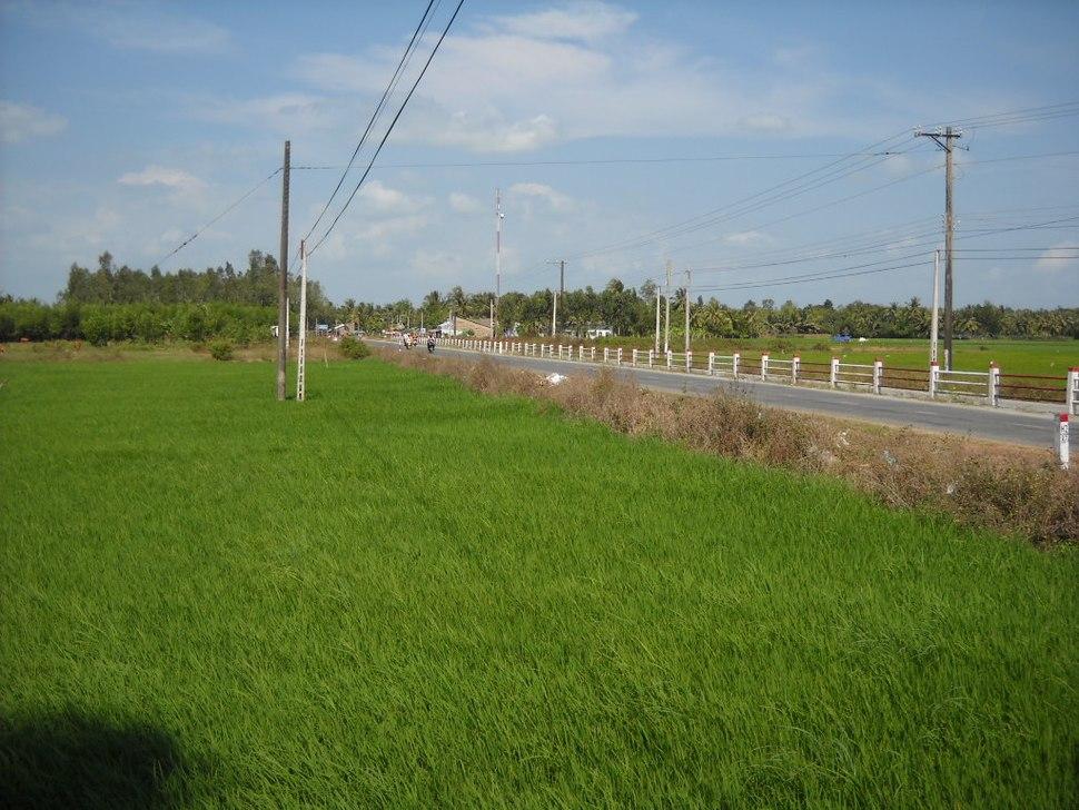 Quốc lộ 60, Trà Vinh đi Sóc Trăng