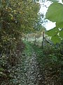 Quaregnon, Belgium - panoramio (4).jpg