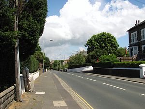 Quarterbridge Road - The A2 Quarterbridge Road, with the level section of road used as the start area for Isle of Man TT 1911–1913 in foreground with the crest of the rise at Selborne Drive visible in the background