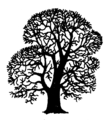 Quercus robur Silhouette (oddsock).png