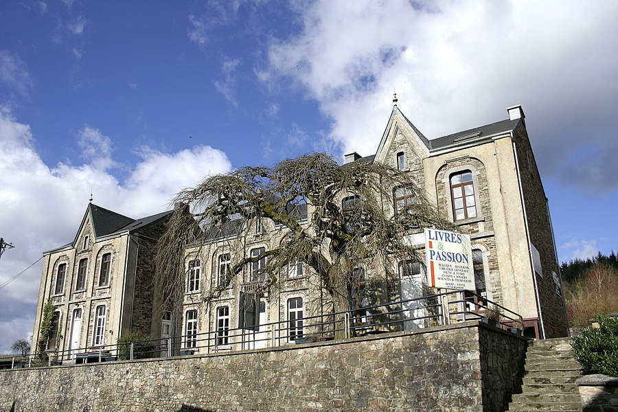 Redu   (Belgium), Rue de Hamaide, 53b - The ancient primary school and  its glabra elm - Ulmus glabra (Ulmus glabra camperdownii).