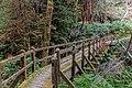 Redwood Creek Valley 13.jpg