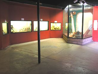 Southern Nevada Zoological-Botanical Park - Image: Reptile Room at Las Vegas Zoo