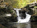 Ricketts Glen State Park Murray Reynolds Falls 6.jpg