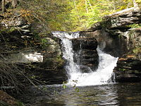 Water falls through a chute in layered rock, divided by a large pulpit-shaped boulder. A pool is visible at the base of the falls, and the leaves on the surrounding sunlit trees are bright green or yellow.