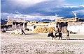 Riding a dzo. Tingri, Tibet Autonomous Region. 1993.jpg