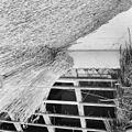 Rietendak tijdens het dekken - Blaricum - 20344434 - RCE.jpg