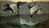Painting of ducks being shot